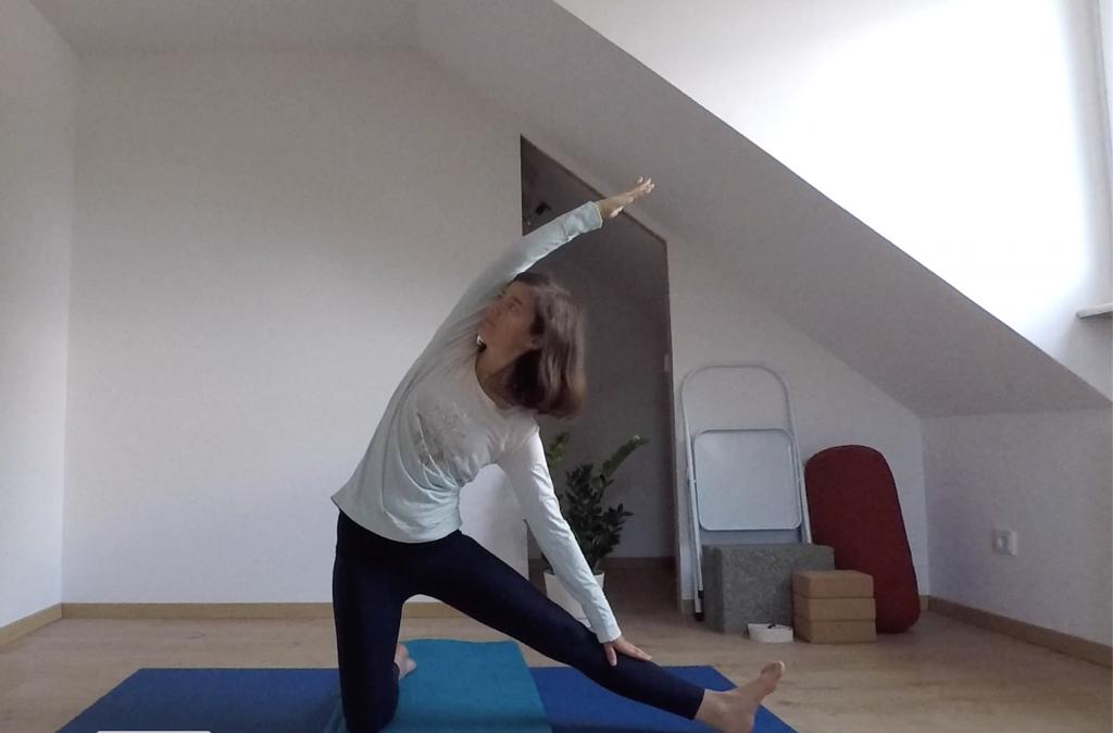 Yoga Iyengar Yogasana